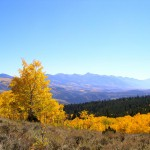 Aspen Tour 4